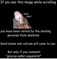 If You See This Image While Scrolling: If you see this image while scrolling  doot  doot  you have been visited by the dooting  peruvian flute skeleton  Good bones and calcium will come to you  But only if you comment  gracias senior esqueleto!