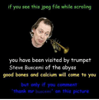 2spooky4me📣💀🎺🎺: if you see this jpeg file while scrolling  you have been visited by trumpet  Steve Buscemi of the abyss  good bones and calcium will come to you  but only if you comment  thank mr buscemi' on this picture 2spooky4me📣💀🎺🎺