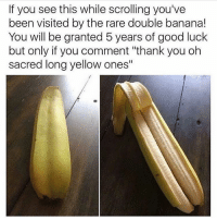 """Lmao, Tumblr, and Thank You: If you see this while scrolling you've  been visited by the rare double banana!  You will be granted 5 years of good luck  but only if you comment """"thank you oh  sacred long yellow ones"""" Lmao"""