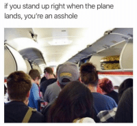 Dank, Asshole, and 🤖: if you stand up right when the plane  lands, you're an asshole Fact