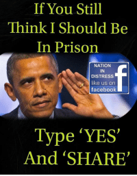 Facebook, Memes, and Prison: If You Still  Think I Should Be  In Prison  NATION  IN  DISTRESS  like us on  facebook  Type ΎES,  And 'SHARE
