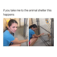 Accurate @cohmedy: if you take me to the animal shelter this  happens Accurate @cohmedy