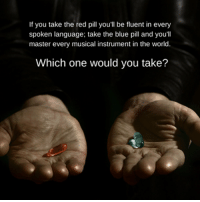 If you take the red pill you'll be fluent in every  spoken language; take the blue pill and you'll  master every musical instrument in the world  Which one would you take? Red pill ftw.