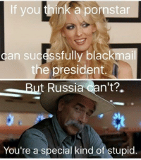 The Worst, Russia, and Pornstar: If you think a pornstar  can sucessfully blackmail  the president.  But Russia Can't?.  dt  You're a special kind of stupid The worst kind of stupid...