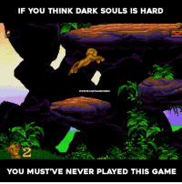 Dark Souls vs. Lion King: IF YOU THINK DARK SOULS IS HARD  www.PBCOMAVGAMINGMEMS  YOU MUST VE NEVER PLAYED THIS GAME Dark Souls vs. Lion King