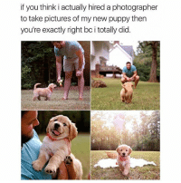 Funny, God, and Memes: if you think i actually hired a photographer  to take pictures of my new puppy then  you're exactly right bc i totally did. Follow @god for the most hilarious memes 😂