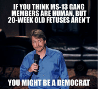 Preach, Gang, and Old: IF YOU THINK MS-13 GANG  MEMBERS ARE HUMAN, BUT  20-WEEK OLD FETUSES AREN'T  YOU MIGHT BE A DEMOCRAT Preach.