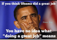 """great job: If you think Obama did a great job  Dixon  D  You have no idea what  """"doing a great job"""" means"""