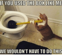 25 Memes About Cats and Dogs That Every Pet Owner Will Love - I Can Has Cheezburger? - Funny Cats | Funny Pictures | Funny Cat Memes | GIF | Cat GIFs | Dogs | Animal Captions | LOLcats | Have Fun | Funny Memes: IF YOU USED THE BOX LIKE ME  WE WOULDN'T HAVE TO DO!THIS 25 Memes About Cats and Dogs That Every Pet Owner Will Love - I Can Has Cheezburger? - Funny Cats | Funny Pictures | Funny Cat Memes | GIF | Cat GIFs | Dogs | Animal Captions | LOLcats | Have Fun | Funny Memes