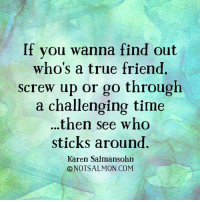 True Friends Meme: If you wanna find out  who's a true friend,  screw up or go through  a challenging time  then see who  sticks around  Karen Salmansohn  O NOT SALMON COM