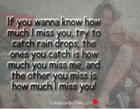 Great Love, Memes, And Quotes: If You Wanna Know How Much Miss You,