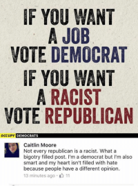 (GC): IF YOU WANT  A JOB  VOTE DEMOCRAT  IF YOU WANT  A RACIST  VOTE REPUBLICAN  occupy DEMOCRATS  Caitlin Moore  Not every republican is a racist. What a  bigotry filled post. I'm a democrat but I'm also  smart and my heart isn't filled with hate  because people have a different opinion.  13 minutes ago 11 (GC)