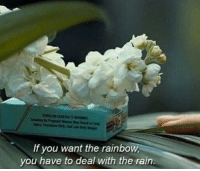 Rain, Rainbow, and You: If you want the rainbow,  you have to deal with the rain