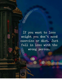 Fall, Love, and Memes: If you want to lose  weight you don't need  exercise or diet. Just  fall in love with the  wrong person.