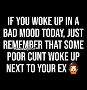 Your Ex: IF YOU WOKE UP IN A  BAD MOOD TODAY, JUST  REMEMBER THAT SOME  POOR CUNT WOKE UP  NEXT TO YOUR EX  MoreCrazyStuff
