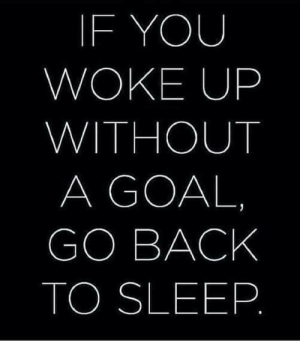 This facts though💯: IF YOU  WOKE UP  WITHOUT  A GOAL  GO BACK  TO SLEEP This facts though💯