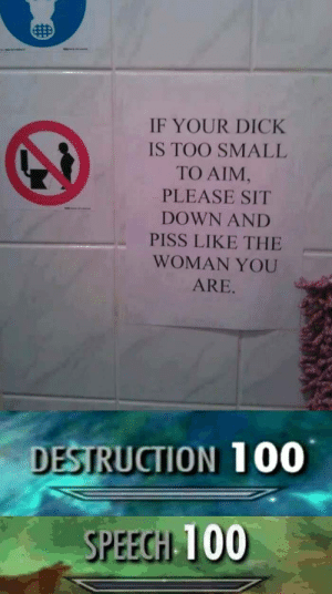 Anaconda, Dank, and Memes: IF YOUR DICK  IS TOO SMALL  TO AIM,  PLEASE SIT  DOWN AND  PISS LIKE THE  WOMAN YOU  ARE.  DESTRUCTION 100  SPEECH 100 Someones triggered by Ri1020 MORE MEMES