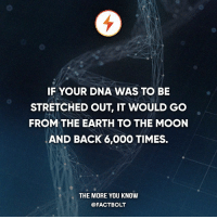 IF YOUR DNA WAS TO BE  STRETCHED OUT, IT WOULD GO  FROM THE EARTH TO THE MOON  AND BACK 6,000 TIMES.  THE MORE YOU KNOW  @FACT BOLT Hey guys, Follow @askinstag for fun community questions!