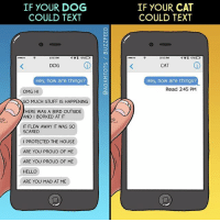 Which one are you?: IF YOUR DOG  COULD TEXT  IF YOUR CAT  COULD TEXT  3-15 AM  3:15 AM  DOG  CAT  Hey, how are things?  Hey, how are things?  Read 2:45 PM  OMG HI  SO MUCH STUFF IS HAPPENING  HERE WAS A BIRD OUTSIDE  AND I BORKED AT IT  IT FLEW AWAY IT WAS SO  SCARED  I PROTECTED THE HOUSE  ARE YOU PROUD OF ME  ARE YOU PROUD OF ME  HELLO  ARE YOU MAD AT ME Which one are you?