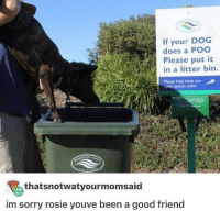Eggs and bacon and waffles and pancakes and French toast: If your DOG  does a POO  M in a litter bin.  Please help keep our  A  en spaces dean  thatsnotwatyourmomsaid  im sorry rosie youve been a good friend Eggs and bacon and waffles and pancakes and French toast