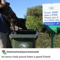 rosy: If your DOG  does a POO  Please put it  in a litter bin.  Please help keep our  epen spaces clean.  thatsnotwatyourmomsaid  im sorry rosie youve been a good friend