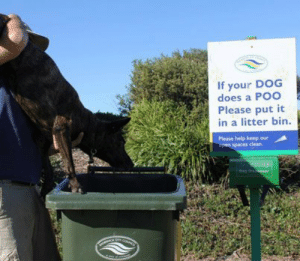 Sorry, Tumblr, and Rosie: If your DOG  does a Poo  Please put it  in a litter bin  Please help keep our thatsnotwatyourmomsaid:  im sorry rosie youve been a good friend