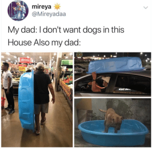 If your dog doesn't have its own mini pool, where do you stand? via: mireyadaa: If your dog doesn't have its own mini pool, where do you stand? via: mireyadaa