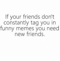 That moment though your best friend tags someone else in a relatable meme and you're like BITCH I SEE YOU WTF!!! 👊🏻 (@thoughtcatalog): If your friends don't  constantly tag you in  funny memes you need  new friends That moment though your best friend tags someone else in a relatable meme and you're like BITCH I SEE YOU WTF!!! 👊🏻 (@thoughtcatalog)