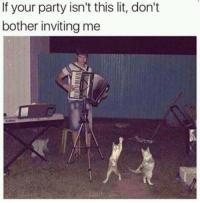 Lit, Memes, and Party: If your party isn't this lit, don't  bother inviting me https://t.co/Io9phIZRYP