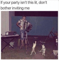 Lit, Memes, and Party: If your party isn't this lit, don't  bother inviting me Puuuurrrrrty lit