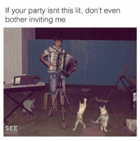 Lit, Memes, and Party: If your party isnt this lit, don't even  bother inviting me  SEE  MORE 😂😂😂  (via See More)