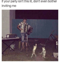 """Lit, Memes, and Party: If your party isn't this lit, don't even bother  inviting me <p>Summer '18 via /r/memes <a href=""""https://ift.tt/2JonSc3"""">https://ift.tt/2JonSc3</a></p>"""