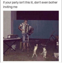 Funny, Lit, and Party: If your party isn't this lit, don't even bother  inviting me 😏