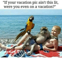 """""""If your vacation pic ain't this lit,  were you even on a vacation?"""" DROP those vacation pics here  ⬇️  Bet yours aren't this #lit! 🤣#ImagineThat  ~Evilgyrl  💀"""