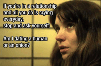 Memes, Onion, and 🤖: If youre a relationship  and all you dois crying  everyday,  Stop and ask yourself  Am I dating a human  or an onion? Ogres are like onions... so you might be dating an ogre. Follow @9gag @9gagmobile 9gag dating relationship