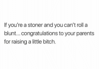 Bitch, Memes, and Parents: If you're a stoner and you can't roll a  blunt...congratulations to your parents  for raising a little bitch.