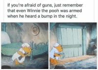 Winnie the Pooh: If you're afraid of guns, just remember  that even Winnie the pooh was armed  when he heard a bump in the night.