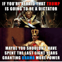 They did it to themselves.: IF YOU'RE AFRAID THAT  TRUMP  IS GOING TO BE A DICTATOR  MAYBE YOU SHOULDNT HAVE  SPENT THE LAST EIGHT YEARS  GRANTING  OBAMA  MORE POWER They did it to themselves.