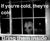 Ayy LMAO, Dank Memes, and Bringed: If you're cold, they're  cold  Bring them inside Ayy lmao