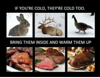 Memes, Cold, and 🤖: IF YOU'RE COLD, THEY'RE COLD TOO  BRING THEM INSIDE AND WARM THEM UP Yum!