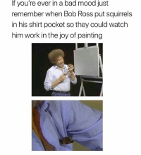 @omg is a must follow: If you're ever in a bad mood just  remember when Bob Ross put squirrels  in his shirt pocket so they could watch  him work in the joy of painting @omg is a must follow