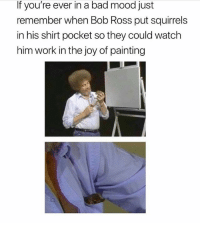 Bad, Mood, and Phone: If you're ever in a bad mood just  remember when Bob Ross put squirrels  in his shirt pocket so they could watch  him work in the joy of painting Tag someone so they open up their phone to this 😂 @teengirlclub @teengirlclub @teengirlclub