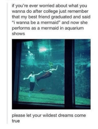 "Dank, 🤖, and Mermaid: if you're ever worried about what you  wanna do after college just remember  that my best friend graduated and said  ""i wanna be a mermaid"" and now she  performs as a mermaid in aquarium  shows  please let your wildest dreams come  true"