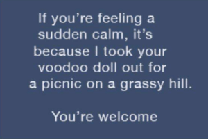 Wholesome, Witch, and Voodoo: If you're feeling a  sudden calm, it's  because I took your  voodoo doll out for  a picnic on a grassy hill.  You're welcome Wholesome witch