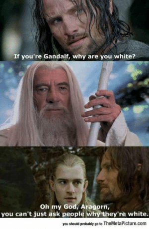 lolzandtrollz:  Oh Come On, Seriously Aragorn?: If you're Gandalf, why are you white?  Oh my God, Aragorn,  you can't just ask people why they're white.  you should probably go to TheMetaPicture.com lolzandtrollz:  Oh Come On, Seriously Aragorn?