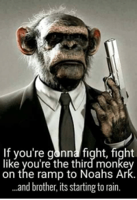 Monke: If you're gonna fight, fight  like you're the third monke  on the ramp to Noahs Ar  and brother, its starting to rain.