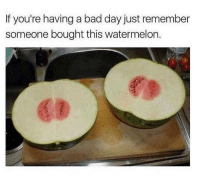 Bad, Bad Day, and Memes: If you're having a bad day just remember  someone bought this watermelon.  63 Just know! https://t.co/UdGnnuvmpW