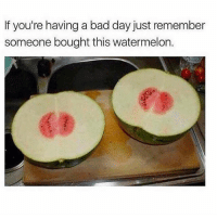 Bad, Bad Day, and Memes: If you're having a bad day just remember  someone bought this watermelon. can you imagine 🍉 (via @memes)