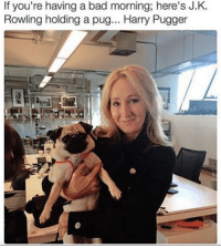 Harry Pugger.: If you're having a bad morning here's J.K  Rowling holding a pug... Harry Pugger Harry Pugger.
