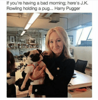 Memes, Pugs, and J. K. Rowling: If you're having a bad morning; here's J.K.  Rowling holding a pug... Harry Pugger Q- cats or dogs? Tag a Friend! harrypotter potterhead